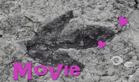 ジュラシック・パーク、恐竜の足跡