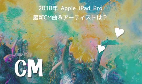 apple ipad pro Cm曲