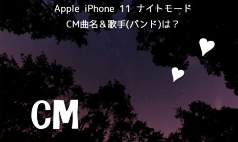 apple iphone 11 cm曲