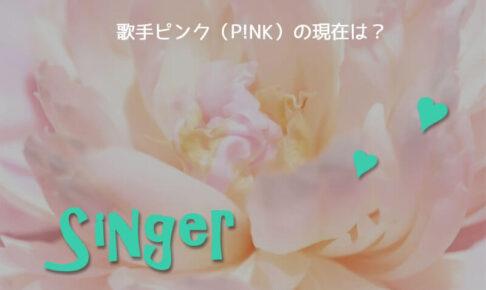 歌手ピンク現在