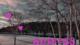 ガーディアンズオブギャラクシー、マンティス役の女優ポム・クレメンティーフが可愛い!