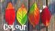 自分に似合う色知っていますか?パーソナルカラーや便利なアプリご紹介